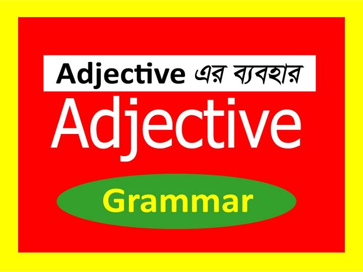 adjective এর ব্যবহার