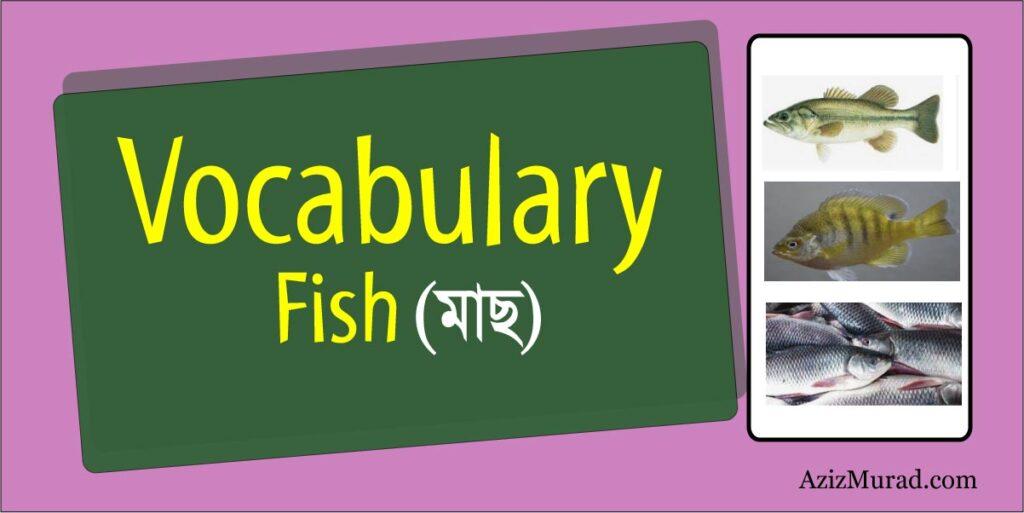 Vocabulary Fish
